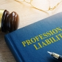 Michael Lamson-Liability Cases-homeowner liability-1