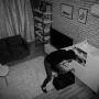 Michael Lamson-property crimes-burglary-2